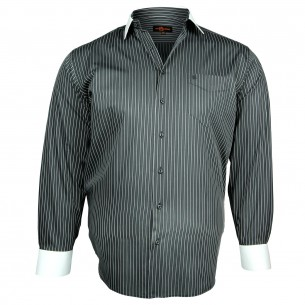 Chemise col blanc DANDY Doublissimo GT-Y2DB2